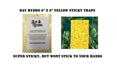 """5pc BAY HYDRO 6"""" X 8"""" Yellow Sticky Traps, Thrips, Whiteflys, Aphids, Gnats ETC"""
