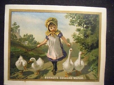 victorian trade card # 0162 - BURNETT COLOGNE WATER - GIRL AND GEESE