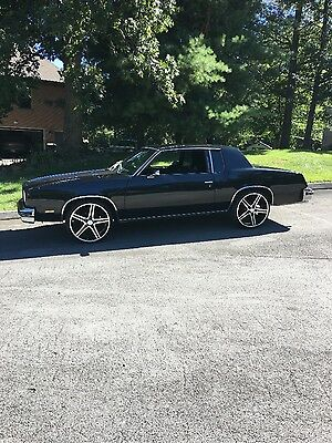 1979 Oldsmobile Cutlass  1979 cutlass