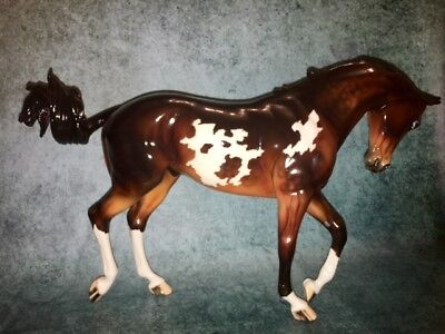 Peter Stone Dah Pm 194 Thoroughbred W/ Ocean Wave Tail - Glossy Seal Bay Overo