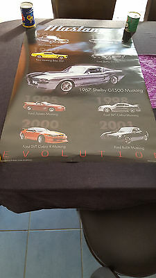 Ford Mustang Evolution Poster Gt 500 Gt 350 Boss Cobra Mint Condition