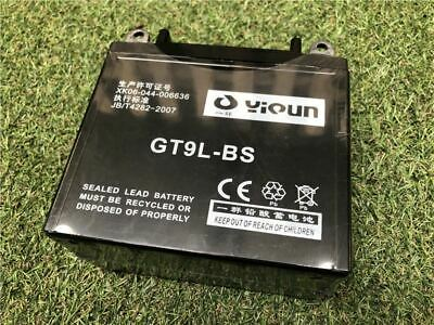 Battery for 15HP Chipper Electric Start   Chipper Spares