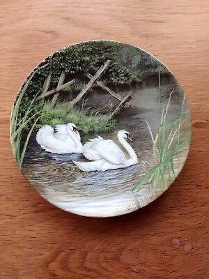 Decorative plate 'Swan Lake'
