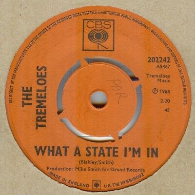 The Tremeloes**what A State I'm In**mod**psych**listen To It