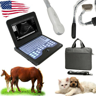 Pets Portable Veterinary Ultrasound Scanner Digital Laptop Machine with 2 Probes