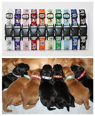 Puppy ID Whelping Collars Elephant Print Choose Your Own Colours for Kit Box
