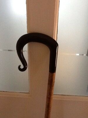 Horn handle walking stick
