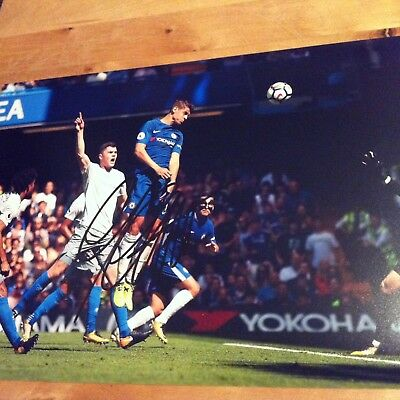 CHELSEA Alvaro Morata 12x8 photo 2017/2018 SIGNED