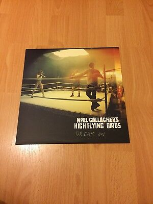 "Noel Gallaghers High Flying Birds Dream On 12"" Vinyl Rare Numbered"