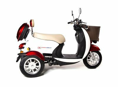 TandemSport, Electric, Mobility Aid, 2-PERSON, Scooter, Hydraulic brakes