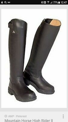 mountain horse long leather riding boots steal toe cap worn once !!