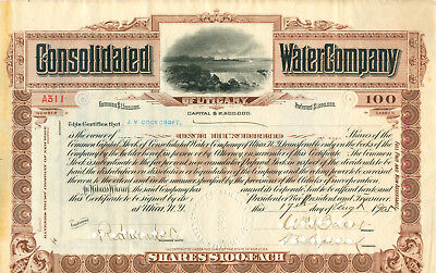 Consolidated Watercompany USA 1911 - RAR -