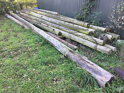 Used Telegraph Poles / Electrical poles - Whitchurch Shropshire