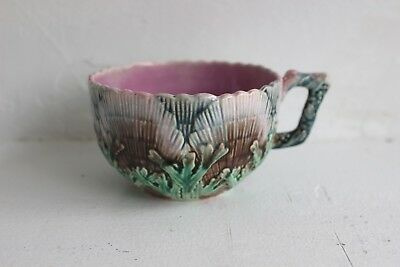 Antique Etruscan Griffin Smith Hill Seaweed & Shell Majolica Cup, Excellent