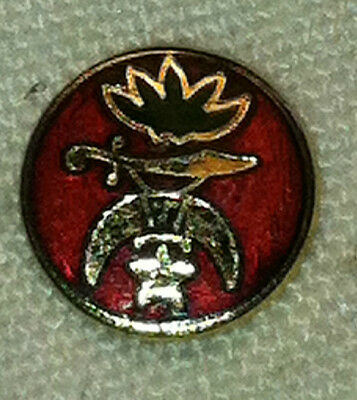 Unique Vintage Freemason Masonic Shriner Lapel Pin