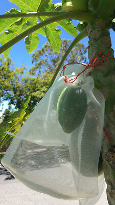 Fine Nylon Vege Net Fruit Protection Bags with a drawstring re-usable breathable