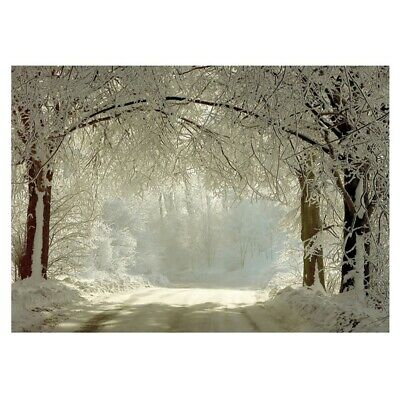 7x5ft Winter Backdrops Photography Snow Freeze Forest Background for Studio E2L9