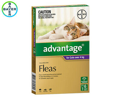 Advantage Flea Treatment For Cats 4kg+ 6pk