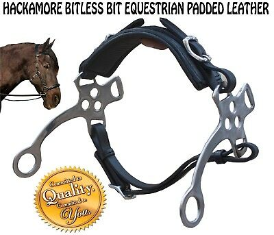 New Hackamore Bitless Bit Equestrian Padded Leather Stainless Steel