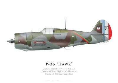 Print Hawk 75A-1, G-CCVH, The Fighter Collection (by G. Marie)
