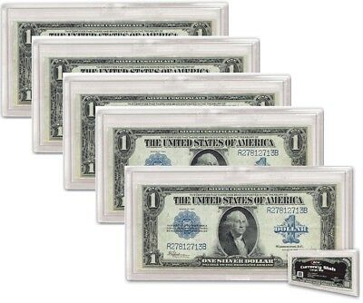 Lot of 5 x BCW Deluxe Currency Slab - Large Bill (#CS31)