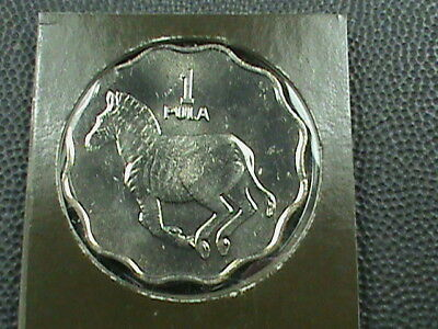 BOTSWANA    1  Pula    1981    BRILLIANT  UNCIRCULATED   ,   MINT  SET