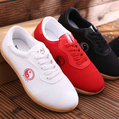 BreathableTai Chi  Cloth Shoe Martial Arts Tai Chi Kung fu Shoes Casual Sneakers