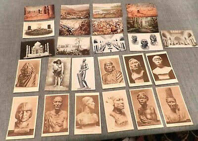 Lot of  60+ Year Old Postcards (Lot 36) Chicago Field Museum of Natural History