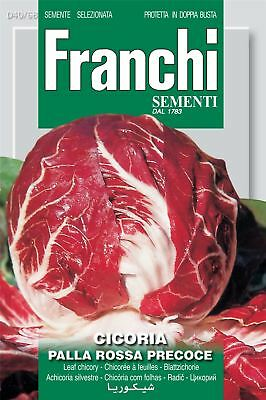 Franchi Seeds of Italy - Chicory - Palla Rossa 3 - Seeds