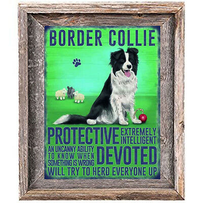 BORDER COLLIE DOG character Quote Art Print 8 x10 image modern home wall decor