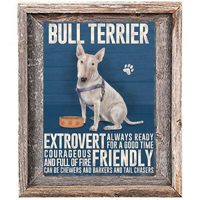 BULL TERRIER DOG character Quote Art Print 8 x10 image modern home wall decor