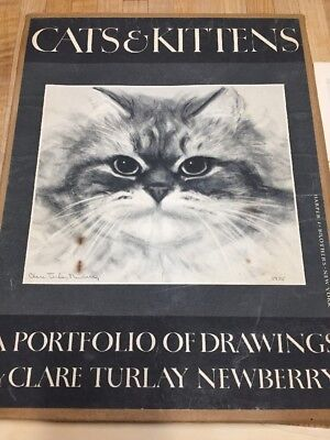 Cats And Kittens A Portfolio Of Drawins Clare Turlay Newberry
