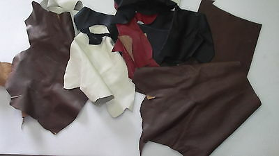 Leather Pezzi Di Vera Pelle  Italiana  3  Kg Affare