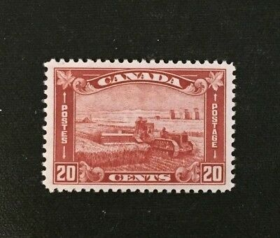 Canadian Stamp #175 MH  $70