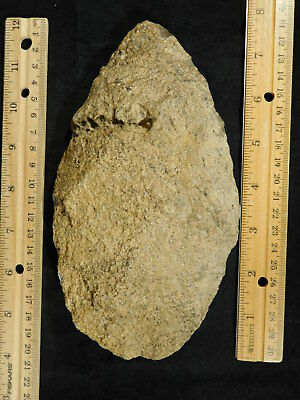 A Big One Million Year Old Early Stone Age ACHEULEAN HandAxe Mauritania 922gr