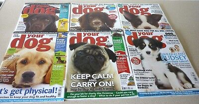 Your Dog 2012 x 6 Issues - Puppy Guides, Advice, Featured Breeds