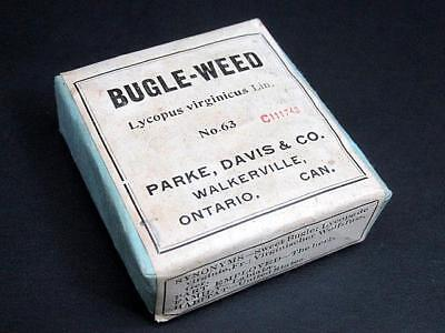 Bugle Weed Antique Apothecary Herb Remedy Parke Davis & Co