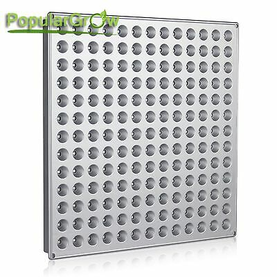 PopularGrow 45W LED Grow Light Best Color Ratio indoor Veg plant Growth lamp