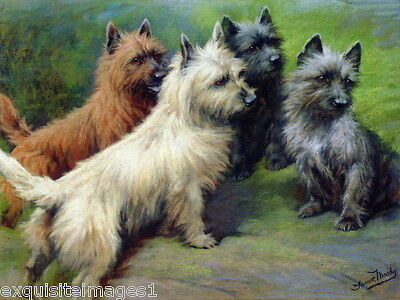 c1900 Moody~Four Cairn Terrier Dog Dogs on Rock~ NEW Large Note Cards