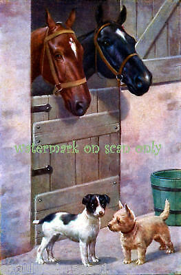Horses with Cairn Terrier & JRT Dogs~ NEW Lg Note Cards