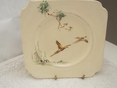 Royal Doulton  Square Side Plate  In The Coppice Pattern   D 5803