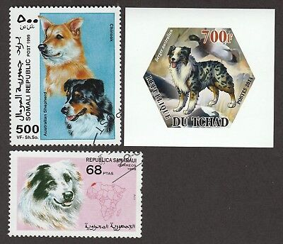 AUSTRALIAN SHEPHERD ** Int'l Dog Postage Stamp Collection ** Unique Gift **
