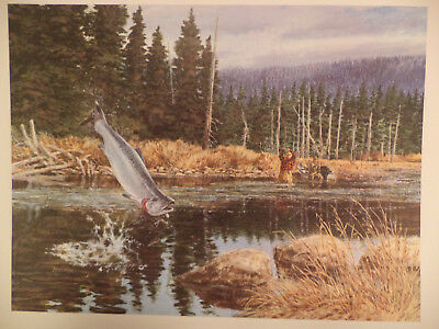 VINTAGE WILDLIFE LITHOGRAPH PRINT by Tom Beecham 14x11 Very Nice SUPER NICE GIFT
