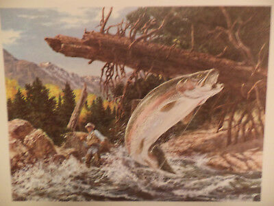VINTAGE WILDLIFE LITHOGRAPH PRINT Tom Beecham 14x11 BEAUTIFUL TROUT ACTION