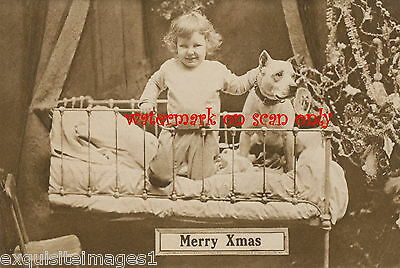 1910 Xmas Photo~Staffordshire Pit Bull Terrier Dog~Iron Bed~Child~Tree~NEW Cards