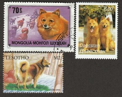 FINNISH SPITZ * Beautiful Int'l Dog Postage Stamps *Great Gift*