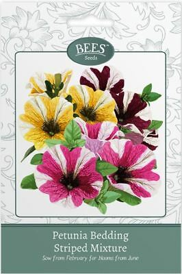 Bees Flower Seeds  - Petunia Bedding - Striped Mix Seeds