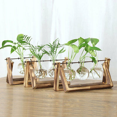 Mini Hanging Glass Tabletop Hydroponic Flower Vase With Wooden Tray