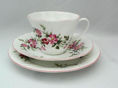 Lovely  QUEEN'S FLORAL  TRIO - Cup/Saucer / Side Plate - Excellent
