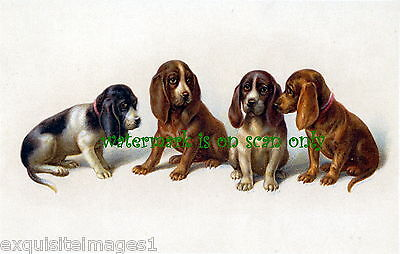 Antique Art~Four Cute Basset Hound Puppy Dogs~NEW Large Note Cards
